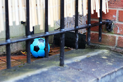 football (Katrinitsa) Tags: city uk greatbritain bridge blue trees red england house playing black tree green sports nature wet colors rain playground architecture yard train canon fence ball buildings river children landscape manchester fun toy boats toys boat canal football kid spring bars waiting alone cityscape child riverside unitedkingdom bokeh britain indigo riverboat colored british suburb railing waterdrops castlefield riverview aside bridgewater irwell riverscape