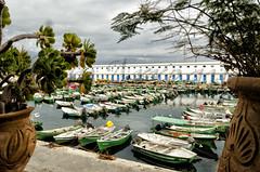 Al Hoceima (mArregui) Tags: parque puerto nikon marruecos reserva parquenatural alhucemas reservanatural marruecosencolores elcolordemarruecos wwwarreguimeluscom marregui lasalhucemas