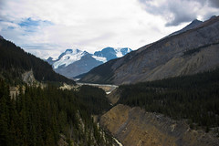 Glacier Skywalk Viewpoint (tammydesu) Tags: trees mountain snow canada mountains nature water river landscape rockies rocky columbia glacier alberta viewpoint icefield skywalk