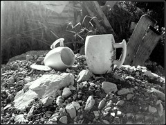 Les pots au lait (Dominique Dufour) Tags: noiretblanc pots naturemorte potaulait dominiquedufourphotos dominiquedufourflickr potsaulait