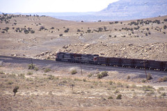 Southern Pacific AC4400CW #206 is westbound near Woodside Utah on 7-14-96 (LE_Irvin) Tags: southernpacific ac4400cw woodsideut