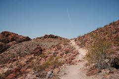 5R6K2519 (ATeshima) Tags: arizona nature havasu