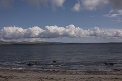Islay 2016 2 (32) (Yorkshire Reckless & Proud) Tags: blue shadow sea people musician cloud sun lighthouse black bird beach birds silhouette vw landscape scotland boat ship harbour cottage sails tent islay seal duster van camper distillery orsay bowmore bruichladdich dacia