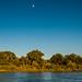Rio Grande bankline