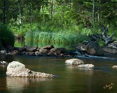 n som rinner nedanfr stugan. #2-2+3 (George The Photographer) Tags: juni se sweden natur  skog sten vatten vrmland fors vattenfall 105mmf25 kilsbergen rinner lilln lvtrd idylliskt kilen