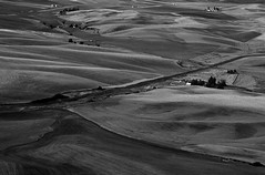 Farm with cultivated fields and fresh crops in rural Eastern Washington State USA (Jim Corwin's PhotoStream) Tags: travel homes blackandwhite bw industry field horizontal rural landscape outdoors photography countryside spring nw day farm farming harvest scenic bluesky business growth soil heartland land pacificnorthwest fields americana environment farms daytime crops plow lush agriculture economy abundance naturalworld grasslands planting cultivation plowed exports harvesting greengrass ruralamerica cropland farmscenes farmscene rurallandscape