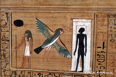 Ancient Egyptian souls (konde) Tags: shadow soul papyrus ba hieroglyphs ancientegypt sheut
