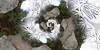 Sun Sculpture (Lee Rosenbaum) Tags: panorama sculpture abstract vancouver landscape britishcolumbia falsecreek hdr olympicvillage 360degree mathmap quincuncial wadebaker ricohthetas