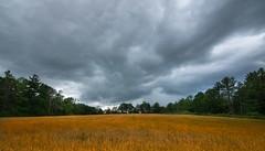Before the storm (jaros 2(Ron)) Tags: nikond800 1116 tokina 28 land field sky summer storm raw ndgrad formatthitech lightroom