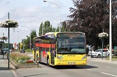 6739 W (brossel 8260) Tags: bus belgique brabant tec wallon