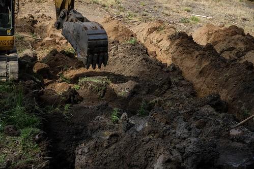 Exhumación en El Pando (León) (2)