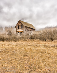 Fog Lifting Over Abandoned Homestead... (Wayne B. Neal Photography) Tags: storm abandoned fog clouds dark alberta homestead prairie