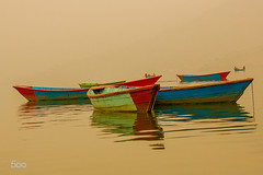 Pristine (RickyShrestha) Tags: morning lake fog boat boating pokhara phew pokhraa