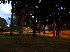 DSC01324 (Caique Cesar) Tags: new brazil brasil night wonderful square amazing fantastic woods sony awesome praa incredible impressive horizonte impressionante belo incrivel