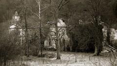L'Etanche (steph-55) Tags: lorraine meuse ruines abbaye nikond800 letanche steph55 tamron2470f28 abbayedeletanche