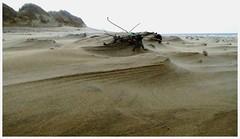 Kenfig Sands. (brian.batters (B-C-B)) Tags: beach sands kenfigburrows kenfigsands kenfigriver