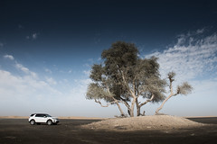 New Discovery Sport -  The first in a new generation (landrovermena) Tags: new dubai desert interior uae discovery unitedarabemirates  newdiscovery  desertdriving discoverysport landrovermena landroverdiscoverysport thediscoverysport