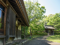 P1120179Lr (photo_tokyo) Tags: japan tokyo jp   tamacenter    tamacentre  tomizawahouse