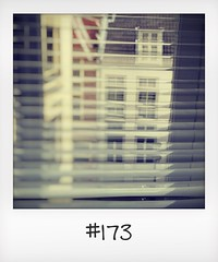 """#DailyPolaroid of 19-3-16 #173 • <a style=""""font-size:0.8em;"""" href=""""http://www.flickr.com/photos/47939785@N05/26204038123/"""" target=""""_blank"""">View on Flickr</a>"""