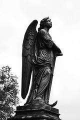 IMG_0029 (ryanfryouxstudio) Tags: blackandwhite angel cemetary angels tombs angelstatue asseenincolumbus