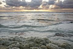 DSC03264 (ZANDVOORTfoto.nl) Tags: sunset surfer noordzee zee zon zandvoort alg ondergaande zeeschuim zandvoortfotonl zandvoortfoto