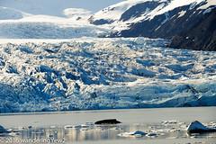 Fjallsárlón and Vatnajökull Glacier (wanderingYew2 (thanks for 3M+ views!)) Tags: iceland nationalpark glacier vatnajökull glaciallagoon vatnajökullglacier fjallsárlón vatnajökulsþjóðgarður vatnajökullnationalpark fujixpro2 vatnajökullnatonalpark