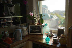 home nature morte, the 4th mai 2016 (ksushasmyr) Tags: life morning light stilllife sun sunlight nature kitchen daylight morninglight still day moscow morte naturemorte