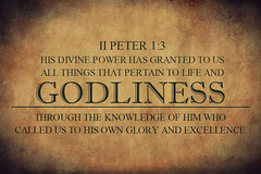 II Peter 1:3 (joshtinpowers) Tags: peter bible scripture
