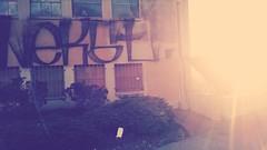 rest in peace (shinigmamicoze) Tags: sf rip nekst sanfranciscograffiti sfgraff
