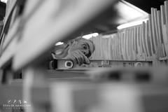 Bataviastad, The Netherlands (Stan de Haas Photography) Tags: ocean old sea lake holland history netherlands dutch marina coast dock marine ship harbour shoreline historic replica seven shore maritime pirate wharf sail historical coastline tall batavia nautical docked lelystad reconstruction flagship voc constrution provinces fluyt standehaas