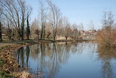 calme (carpentier_patrick) Tags: tree water river eau can ciel reflect arbre channel relfet amienssommepicardiefrance