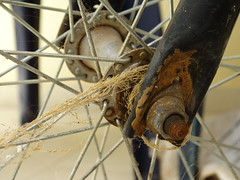 less is more. (Lívia.Monteiro) Tags: bicicleta