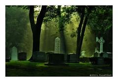 Lush (TooLoose-LeTrek) Tags: green cemetery fog haze cross pillar gravestone gravemarker