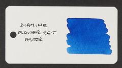 Diamine Flower Set Aster - Word Card