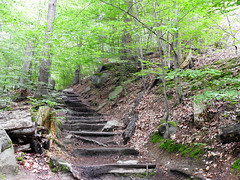 Felsenmeer (Lautertal) (StrongGrace Photography) Tags: forest path steps trail wald treppen pfad odenwald felsenmeer