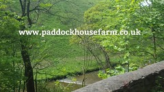 Monday x 4 nights 190 for 2 people 250 for upto 4 persons 275 for upto 6 persons Derbyshire Peak District Holiday Cottages Alton Towers only 13 miles http://ift.tt/1sXufYq #ashbourne #derbyshire #holiday #cottages #accommodation #staffordshire #altonto (laurenpaddockfarm) Tags: 2 people 6 holiday for district derbyshire peakdistrict 4 towers peak x only nights miles persons monday accommodation 13 staffordshire alton ff altontowers 250 chatsworth cottages ashbourne l4l farmstayuk upto selfcatering 190 countrysideuk 275 follow4follow instafollow tagforlikes httpifttt1sxufyq httpifttt1yoz432
