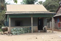 IMG_4203 (Horticulture Innovation Lab) Tags: cambodia transportation packaging phnompenh leafygreens kandal photobybrendadawson