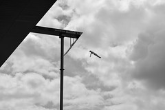 DSC_9664-Edit-3 (MY2200) Tags: cliff fall clouds copenhagen jump nikon opera air free diving redbull intheair operaen redbullcliffdive