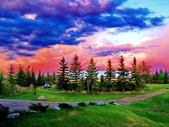 Happy Sunday to all my Flickr friends! (peggyhr) Tags: trees sunset sky canada clouds alberta peggyhr naturewatching bluebirdestates nossasvidasnossomundoourlifeourworld frameit~level01~ super~sixbronzestage1 dsc06005bx