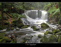 Horseshoe falls (vijayalayan) Tags: waterfall tasmania horseshoefalls mtfield