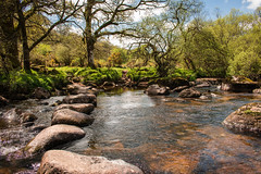 Dartmeet stepping stones (Keith in Exeter) Tags: uk trees wild england nature water grass river landscape countryside nationalpark rocks crossing outdoor path devon gb steppingstones bushes dartmoor dart dartmeet