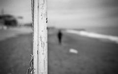 Leica M3-018.jpg (pietroferrarifotografie) Tags: leica bw film monochrome scanner famiglia persone m3 biancoenero giorno esterni pellicola anlogico epsonv550
