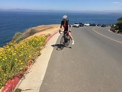 IMG_6869 (younggtx) Tags: david cycling ken victor terri teresa pv palosverdes fathersdayride