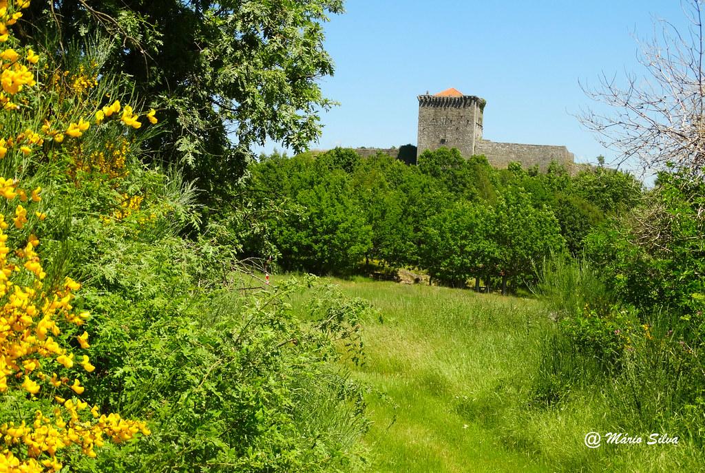 Águas Frias (Chaves) - ...O castelo de Monforte de Rio Livre por entre a vegetação verdejante e florida ...