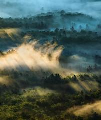 Uplifted (Appalachian Hiker) Tags: sunrise fog rays light mountains valley mist trees blueridgeparkway nc