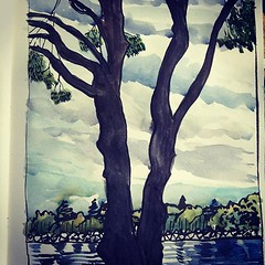 guardian pine (Evelyn Bach) Tags: trees pine point walter perth watercolour brushpen sketch sketchbook river