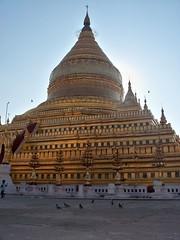 Shwezigon Paya (Bagan, Myanmar) (Sasha India) Tags: myanmar burma bagan pagan pagoda shwezigon shwezigonpagoda asia buddhism μιανμάρ ταξίδι মায়ানমার ভ্রমণ баган паган бирма мьянма пагода храм буддизм путешествие путешествия подорожі подорож мандри азия մյանմար ճանապարհորդություն ミャンマー 旅行 พม่า การท่องเที่ยว மியான்மார் பயண म्यांमार यात्रा 미얀마