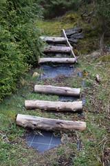 Stavanger Botaniske Hage, Sørmarka, Stavanger (pserigstad) Tags: norway stavanger norge nikon tamron rogaland d5300 nikond5300 tamron16300