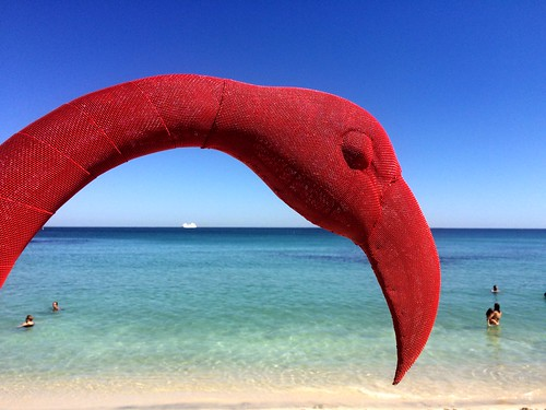 Red Flamingo / Cottesloe Beach