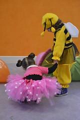 "Carnevale al Fly Family <a style=""margin-left:10px; font-size:0.8em;"" href=""http://www.flickr.com/photos/125024806@N02/16665201538/"" target=""_blank"">@flickr</a>"